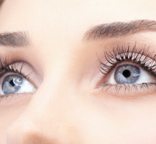 5 Nutrients That Support Eye Health